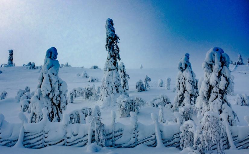 Vad skådar mitt norra öga – vintern som försöker sig på encomeback?